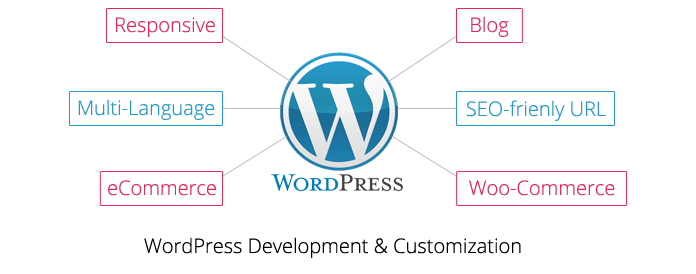 WordPress Development & Customization